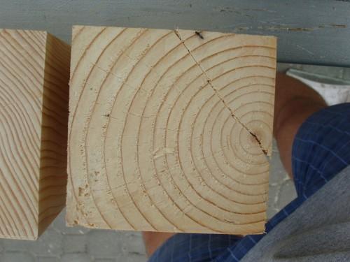 Ultimul picior, cu inima lemnului